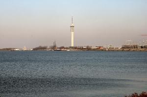 De kust van het Markermeer bij Lelystad, december 2007 (Foto M. Bechthold).